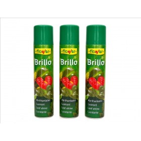 BRILLO PREMIUM SPRAY 800cc