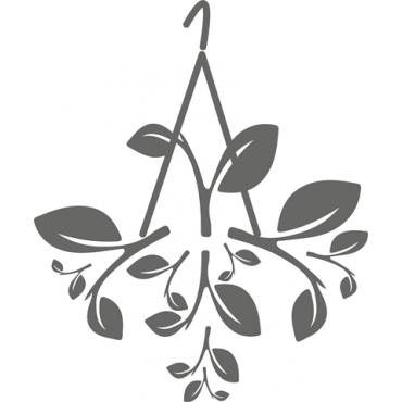 Planta de Colgar